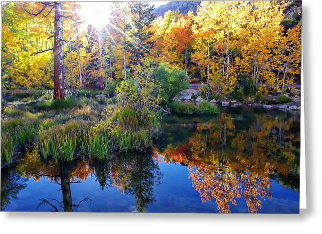 Fall Color Reflection Along Bishop Creek Greeting Card