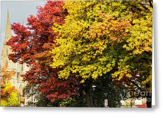 Fall Color St Paul Cathedral Greeting Card