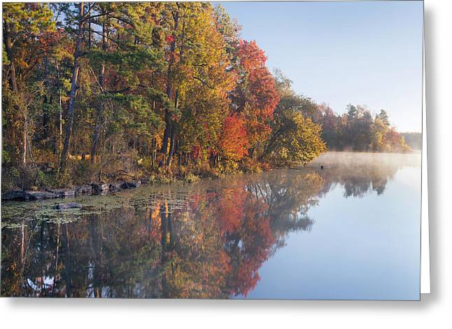 Fall Colors Along Lake Bailee In Petit Greeting Card by Tim Fitzharris