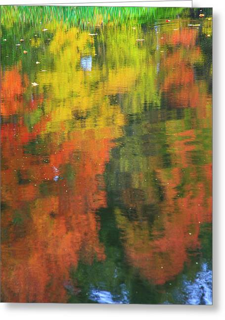 Fall Colors Are Reflected In This Pond Greeting Card