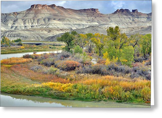 Fall Colors At Scott's Bottom Greeting Card by Eric Nielsen