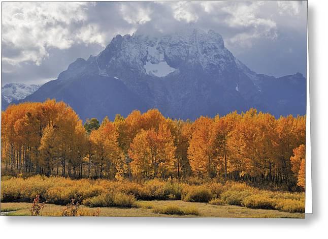 Fall Colors In Grand Teton National Park Greeting Card