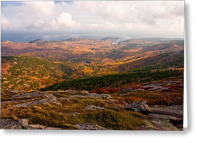 Fall Colors Of Acadia 6656 Greeting Card by Brent L Ander