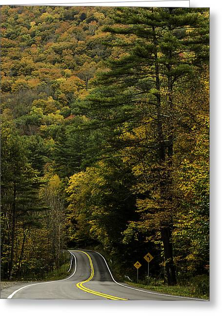 Fall Colors On Mohawk Trail Near Charlemont Greeting Card
