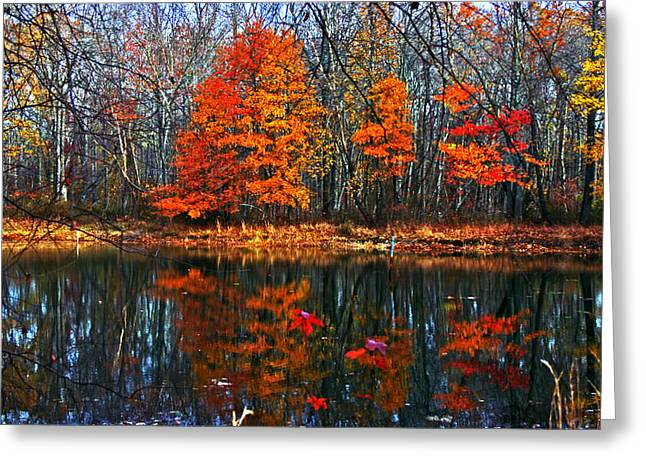 Fall Colors On Small Pond Greeting Card