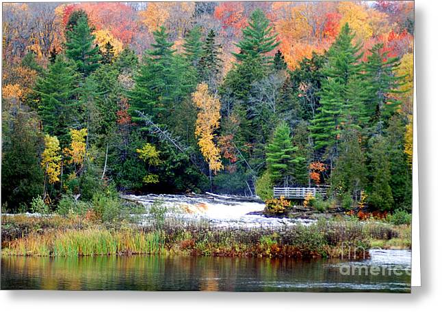 Fall Colors On The  Tahquamenon River   Greeting Card by Optical Playground By MP Ray