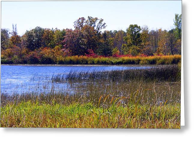 Fall Colors Over The Pond Greeting Card by Mark Hudon