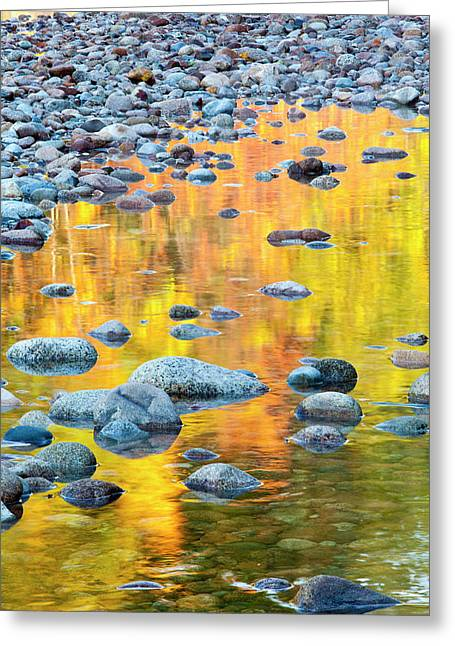 Fall Colors Reflect In The Saco River Greeting Card
