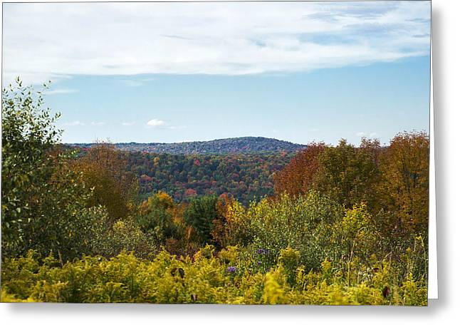 Fall Country Hill Greeting Card by Christina Rollo
