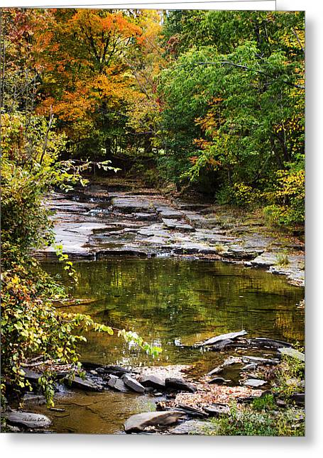 Fall Creek Greeting Card by Christina Rollo
