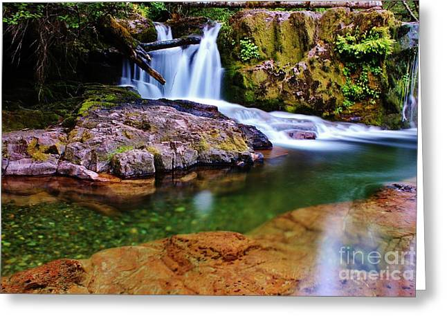 Fall Creek Oregon Greeting Card by Michael Cross