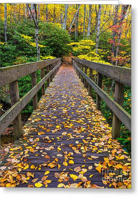Fall Crossing Greeting Card by Anthony Heflin