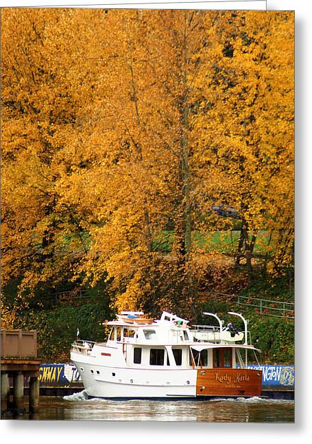 Greeting Card featuring the photograph Fall Cruise by Erin Kohlenberg