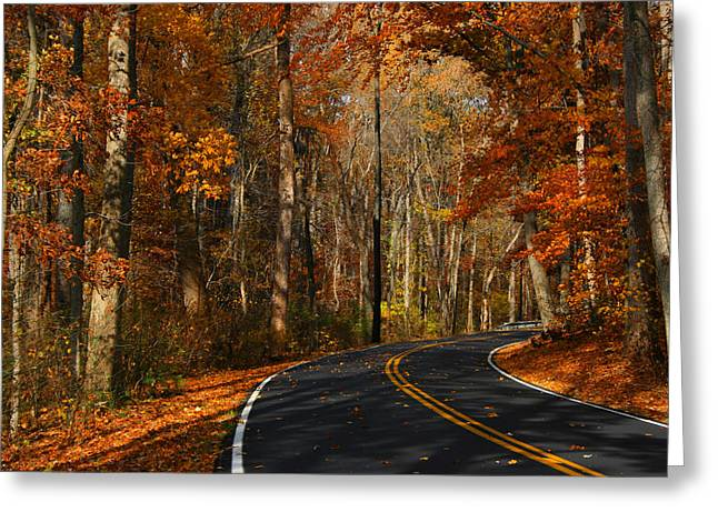 Greeting Card featuring the photograph Fall Curves by Andy Lawless