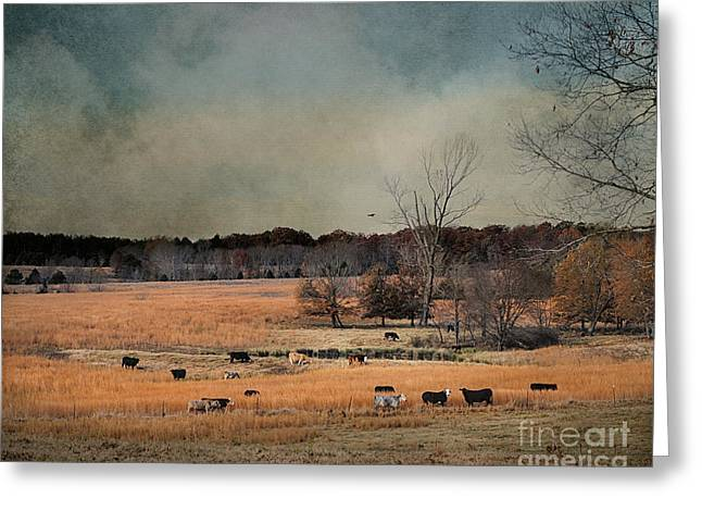 Fall Day In The Country Greeting Card by Jai Johnson