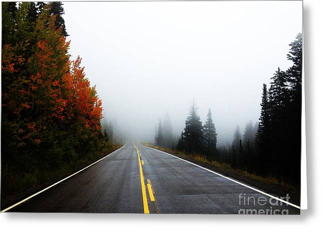 Fall Drive 8x10 Crop Greeting Card