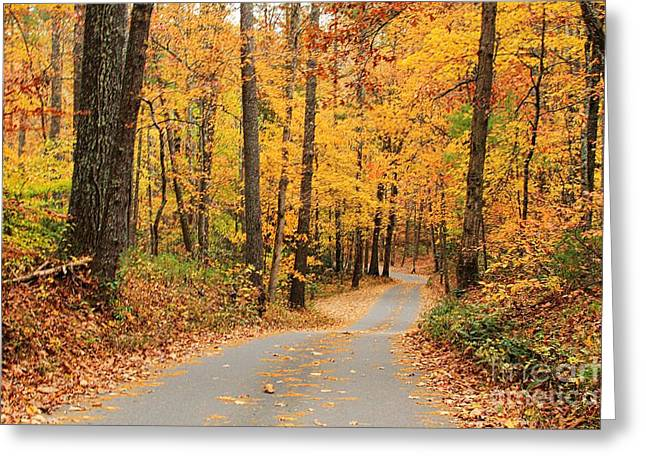 Greeting Card featuring the photograph Fall Drive by Geraldine DeBoer