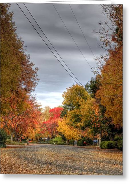 Fall Drive Greeting Card by Ren Alber