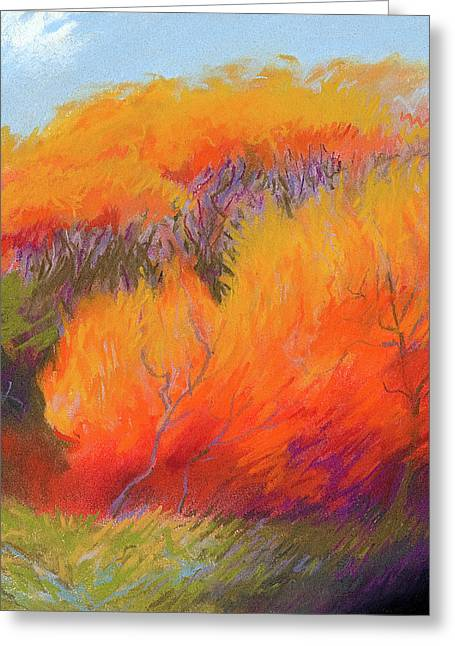 Fall Fire Greeting Card by Bruce Richardson