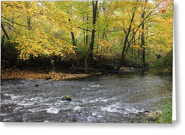 Fall Flow Greeting Card by Jim Gillen