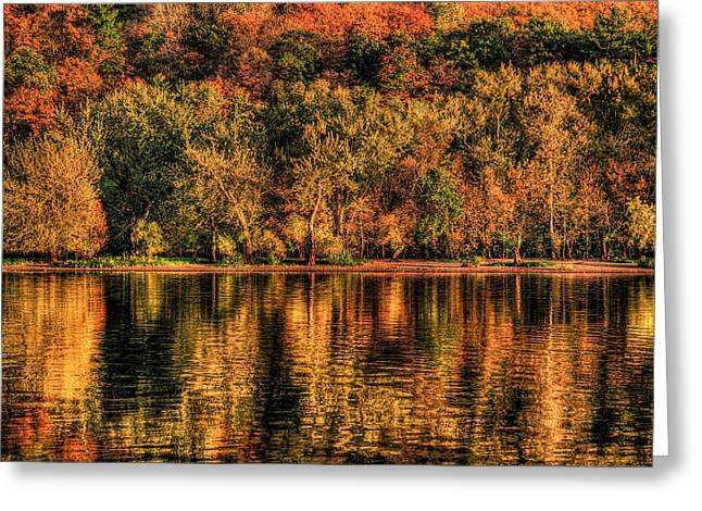 Greeting Card featuring the photograph Fall Foliage by Adam Mateo Fierro
