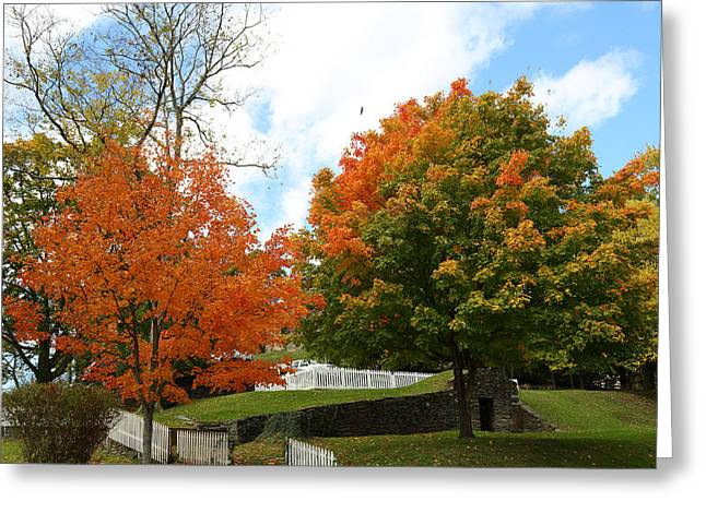 Greeting Card featuring the photograph Fall Foliage Colors 09 by Metro DC Photography