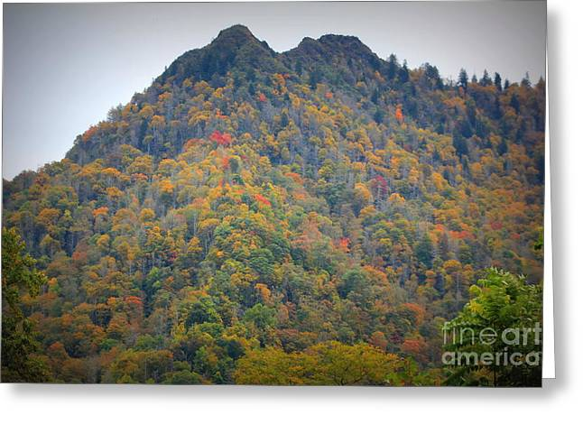 Chimney Tops Before The Fire Of 2016 Greeting Card