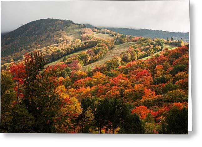 Fall Foliage On Canon Mountain Nh Greeting Card