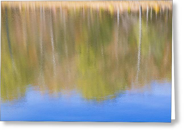 Fall Foliage Reflected In Lake Greeting Card