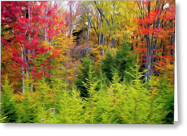 Fall Forest Foliage Greeting Card by Lanjee Chee
