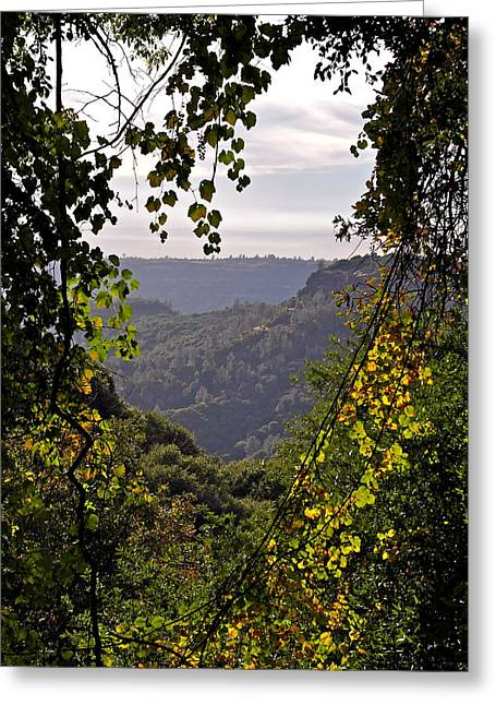 Fall Frames The Canyon Greeting Card