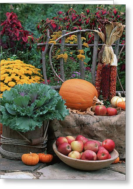 Fall Garden Display, Ornamental Kale Greeting Card by Richard and Susan Day