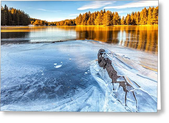 Fall Gives Way To Winter Greeting Card by Evgeni Dinev
