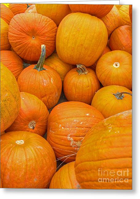 Fall Harvest Greeting Card by ELDavis Photography