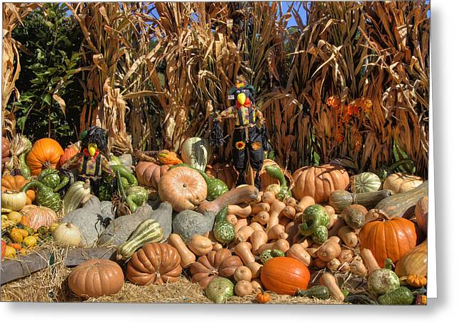 Fall Harvest Greeting Card by Joann Vitali