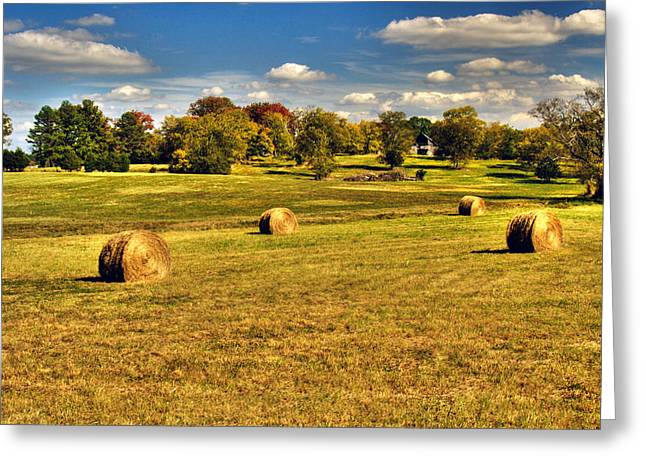 Fall Harvest Greeting Card by Roger Passman