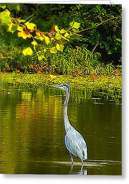 Fall Heron Greeting Card