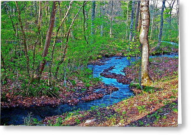 Fall Hollow On Mile 391 Of Natchez Trace Parkway-tenneessee Greeting Card
