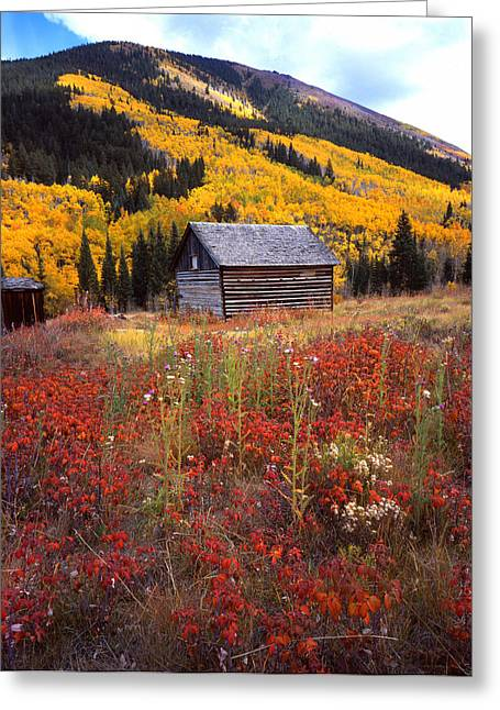 Fall In Ashcroft Greeting Card by Ray Mathis