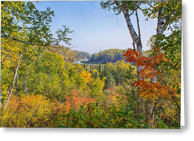 Fall In Gooseberry State Park Greeting Card
