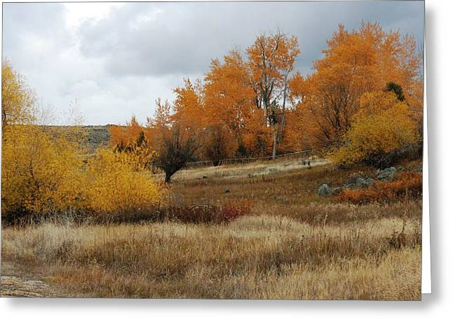 Fall In Montana Greeting Card by Larry Stolle