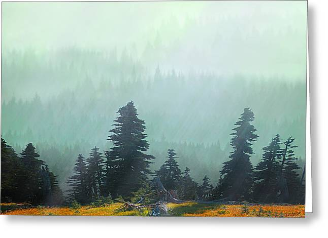 Fall In The Northwest Greeting Card by Jeff Burgess