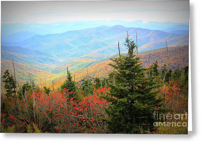Clingsman Dome Smoky Mountains Greeting Card