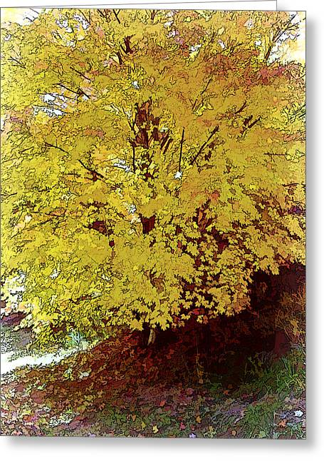 Fall In Yellow Greeting Card by Larry Bishop