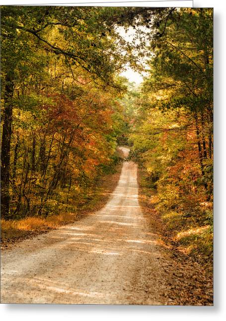 Fall Into Autumn Greeting Card by Mary Timman