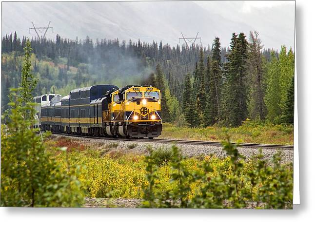 Greeting Card featuring the photograph Fall Is Here In Alaska by Michael Rogers
