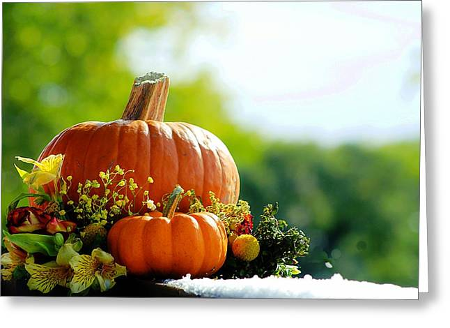 Fall Is My Favorite Color Greeting Card
