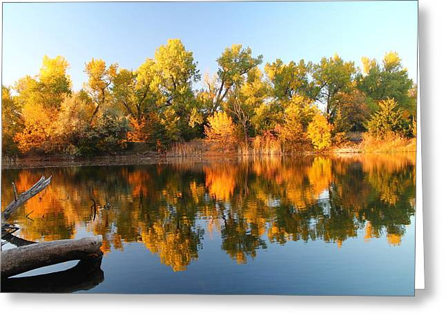 Fall Lake Greeting Card by Alicia Knust