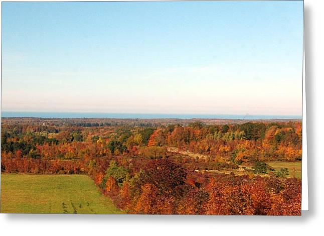 Fall Landscape Greeting Card by Kathleen Struckle