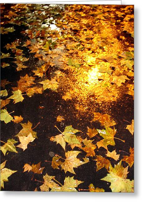 Fall Leaves Greeting Card by Michel Mata